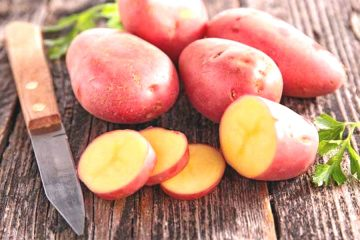 Patata rossa di Padula